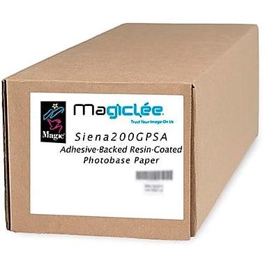 Magiclee/Magic Siena 200G PSA 24