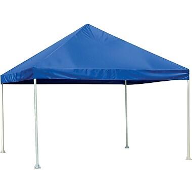 ShelterLogic 12' × 12' Canopy, 2