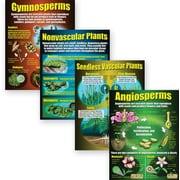 McDonald Publishing® Poster Set, Types of Plants