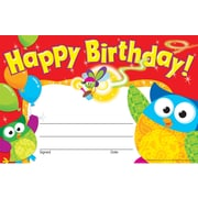 Trend Enterprises Owl-stars! Recognition Award, Happy Birthday, 240/Pack (T-81044)