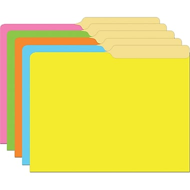 Top Notch Teacher Products File Folder, Brite Colours, 30/Pack (TOP335)