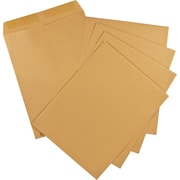 "Staples® Envelopes Kraft Catalogue, 10"" x 13"", 100/Box - Gummed"