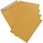 "Staples® Envelopes Kraft Catalogue 9"" x 12"", 100/Box - QuickStrip"