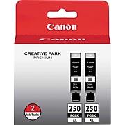 Canon PGI-250XL Black High Yield Ink Cartridge, 2/Pack (6432B004)