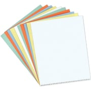 """Magna Visual Data Cards for 1/2"""" Magnetic Card Holders, 5 Colors, 8 1/2"""" x 11"""" Sheets"""