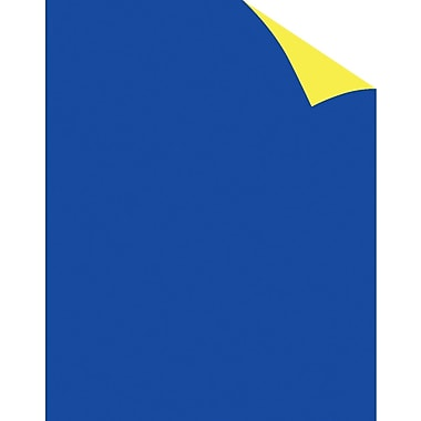 Staples® Two Cool Blue/Yellow Poster Board, 22