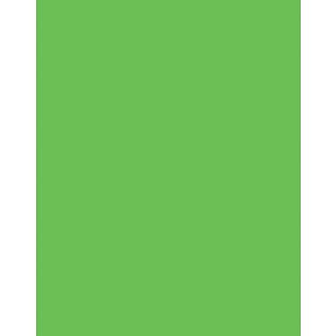 StaplesMD – Carton en mousse Two Cool, vert fluorescent/orange, 20 x 30 po