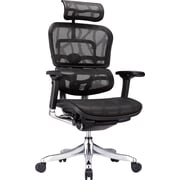 Raynor ME22ERGLT Eurotech Ergohuman Ergo Elite Mesh High-Back Executive Chair with Arm, Black