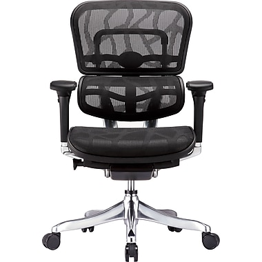 Raynor Eurotech Ergohuman Mid Back Executive Chair, Patterned Mesh, Black, Seat: 20