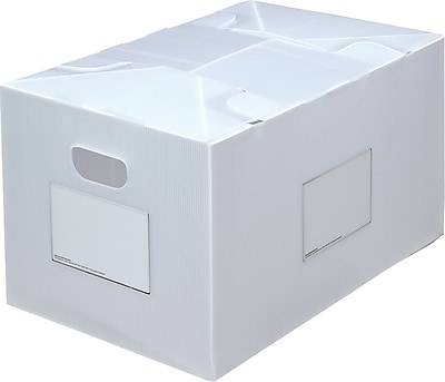"Packaways Plastic 16.5""H x 13.75""W x 21.5""L Collapsible Storage Boxes, Natural, 2/Pack"