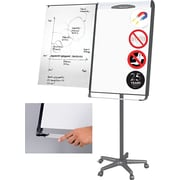 MasterVision® Magnetic Platinum Pure White Dry Erase Mobile Presentation Easel, Black & Silver
