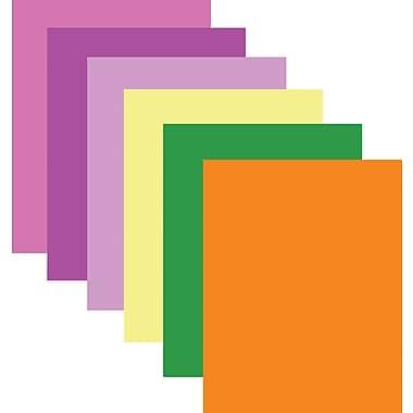 StaplesMD – Carton pour affiche, 22 x 28 po