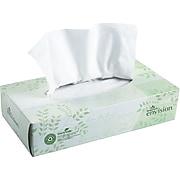 Envision Facial Tissue, 2-Ply, White, 100 Sheets/Box, 30 Boxes/Case (47410)