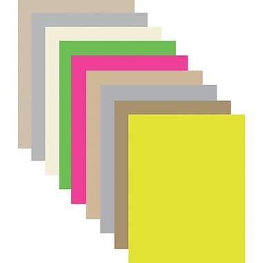 StaplesMD – Tableau en mousse Two Cool, 20 x 30 po