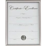 DAX® Back Loading Document Frame, Plastic, 8 1/2 x 11, Silver, Each (N1850N2T)