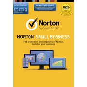 Norton Small Business (1-10 Users) [Download]