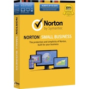 Norton Small Business (1-5 Users) [Product Key Card]