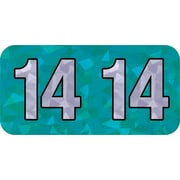 Medical Arts Press® Holographic End-Tab Year Labels, 2014, Blue