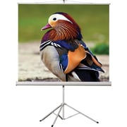 "EluneVision 136"" Portable Tripod Projector Screen, 1:1"
