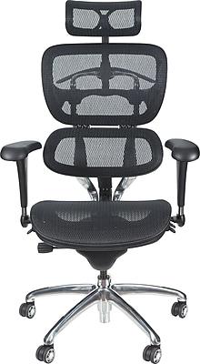 Balt Mesh Executive Office Chair, Adjustable Arms, Black (34729)