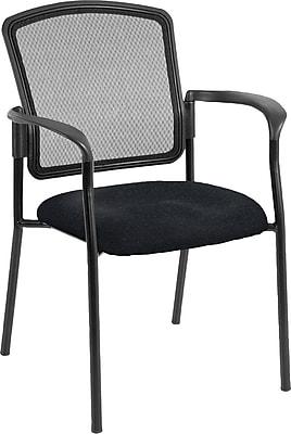 Raynor Eurotech Dakota 2 Steel Guest Chair, Basis Onyx (7011 BAS-ONYX)