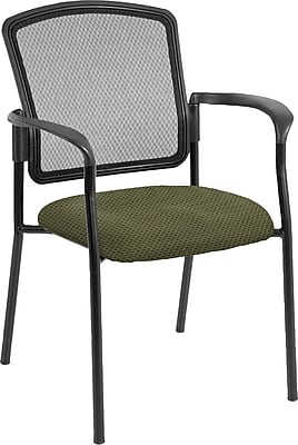 Raynor Eurotech Dakota 2 Steel Guest Chair, Expo Leaf (7011 EXPO-LEAF)