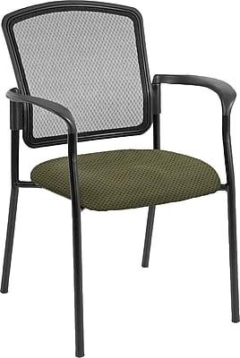 Raynor Eurotech Dakota 2 Steel Guest Chair, Expo Leaf (7011 EXPO-LEAF)