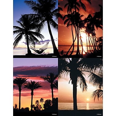 MAP Brand Scenic Assorted Laser Postcards Palm Trees