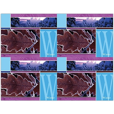 MAP Brand Scenic Laser Postcards Winter