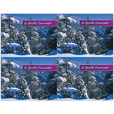 MAP Brand Scenic Laser Postcards Snowy Trees