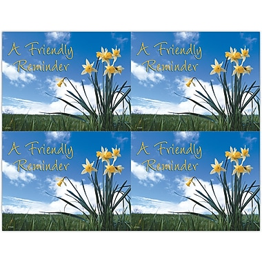 MAP Brand Scenic Laser Postcards Flowers and Sky