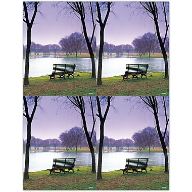 MAP Brand Scenic Laser Postcards Bench by the Side of a Lake