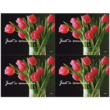 MAP Brand Scenic Laser Postcards Red Tulips