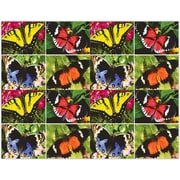 MAP Brand Scenic Laser Postcards Assorted Butterflies