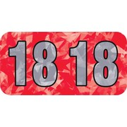 Medical Arts Press® Holographic End-Tab Year Labels; 2018, Red
