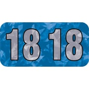 Medical Arts Press® Holographic End-Tab Year Labels; 2018, Blue