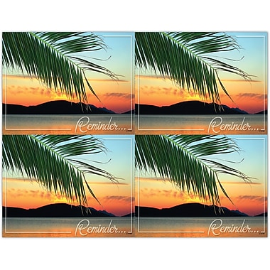MAP Brand Scenic Laser Postcards Scenic Palm Reminder