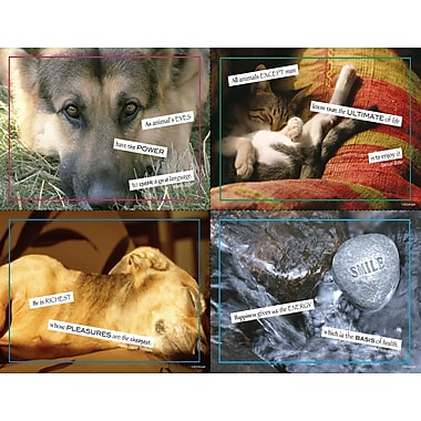 MAP Brand Graphic Image Assorted Laser Postcards Way with Words
