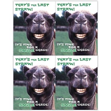 MAP Brand Humorous Laser Postcards Smile Llama