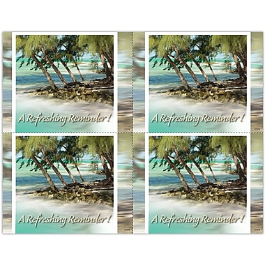 MAP Brand Photo Image Laser Postcards Holiday Series, Palm Trees