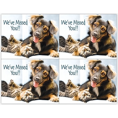 MAP Brand Photo Image Laser Postcards Cat, Dog Miss You