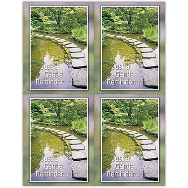 MAP Brand Scenic Laser Postcards Pond Path