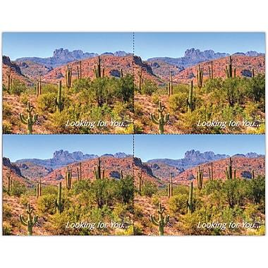 MAP Brand Scenic Laser Postcards Scenic Desert