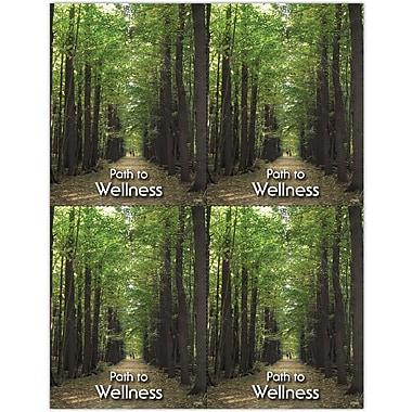 MAP Brand Photo Image Laser Postcards Tree Path