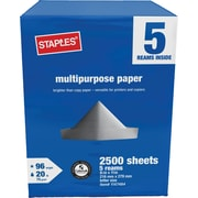 "Staples 8.5"" x 11"" Multipurpose Paper, 20 lbs, 96 Brightness, 2500/Carton (26916-US)"