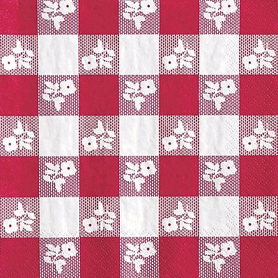 Creative Converting Red Gingham Beverage Napkins, 2 Ply, 16/Pkg (659086)
