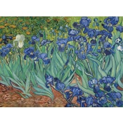 "Trademark Global Vincent Van Gogh ""Irises, 1889"" Canvas Art, 26"" x 32"""