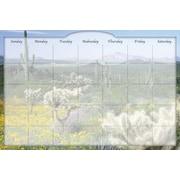 "Biggies Desert Cactus, 48"" x 32"", Film Dry Erase Stickie Monthly Calendar (DC-DTC-48)"
