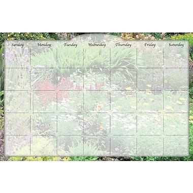 Biggies- Dry Erase Stickie Monthly Calendar, Flower Garden, 48