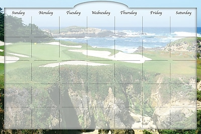 Biggies- Dry Erase Stickie Monthly Calendar, Golf Ocean, 36